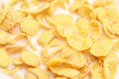 Flocons d'avoine avec du lait Images stock