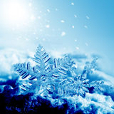 Flocons de neige de décorations de Noël Image stock