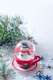 Flocons de neige et hiver Photo libre de droits