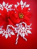 Flocons de neige et poinsettias Images libres de droits