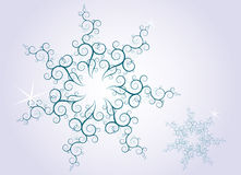 flocons de neige fleuris de conception Photos libres de droits