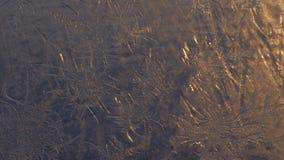 Flocons de neige sur la fenêtre dans le tir de supermacro Images libres de droits