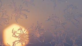 Flocons de neige sur la fenêtre dans le tir de supermacro Photographie stock libre de droits