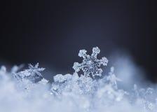 Flocons de neige sur la neige Image stock