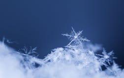 Flocons de neige sur la neige Photo libre de droits