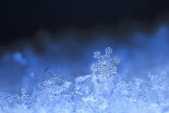 Flocons de neige sur la neige Photographie stock