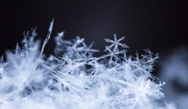 Flocons de neige sur la neige Photos stock