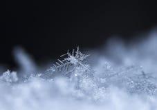Flocons de neige sur la neige Image libre de droits
