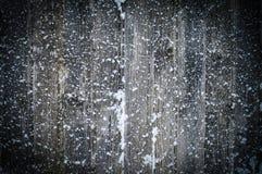 Flocons de neige sur les conseils Photographie stock