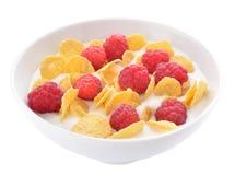 Flocons et framboises d'avoine avec du yaourt Photographie stock libre de droits