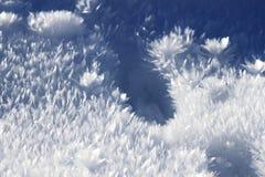 Flocos da congelação Foto de Stock Royalty Free