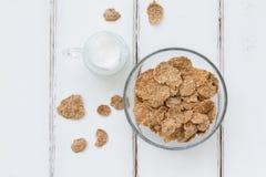 Flocos de farelo - composição saudável do café da manhã Fotos de Stock Royalty Free
