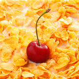 Flocos de milho com cereja Fotos de Stock