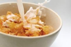 Flocos de milho com leite Fotografia de Stock Royalty Free