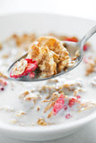 Flocos de milho com morango secada Fotos de Stock