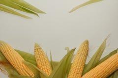 Flocos de milho crus foto de stock