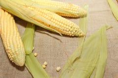 Flocos de milho crus imagens de stock