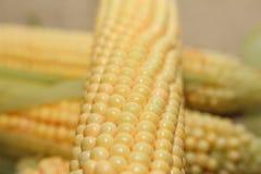 Flocos de milho crus fotografia de stock