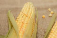 Flocos de milho crus imagem de stock royalty free