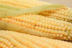 Flocos de milho crus imagem de stock