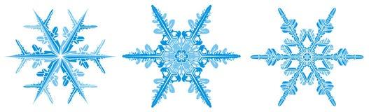 Flocos de neve delicados ilustração royalty free