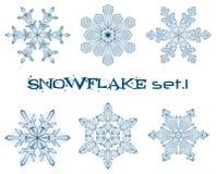 Flocos de neve do inverno Fotografia de Stock Royalty Free