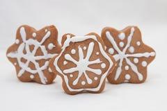 Flocos de neve do pão-de-espécie Fotos de Stock