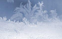 Flocos de neve gelados Fotografia de Stock Royalty Free