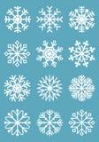 Flocos de neve para a arte -final do projeto Imagem de Stock