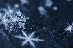 Flocos de neve que flutuam em um espaço empoeirado Fotografia de Stock