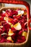 Flocos de Rosa fotos de stock royalty free