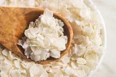 Flocos do arroz do cereal imagens de stock royalty free