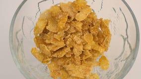 Flocos secos doces do milho vídeos de arquivo