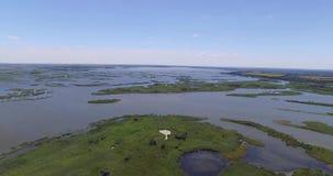Flod översvämmat fält nära en liten by Skjuta luft stock video