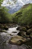 flod Arkivfoton