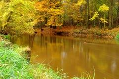 Flod. Arkivbild