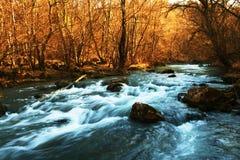 flod Arkivbild