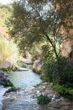 Flod Algar Alicante landskap, Valensia, Spanien Fotografering för Bildbyråer