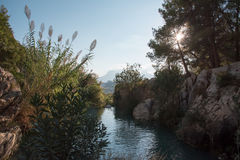 Flod Algar Alicante landskap, Valensia, Spanien Arkivbilder
