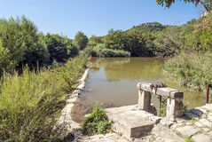 Flod av Lagrasse Arkivfoton