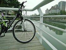 Flod av shijiaen royaltyfria bilder