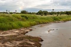 Flod av Tanzania royaltyfri fotografi