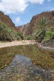 Flod av wadien Daerhu på Socotraön fotografering för bildbyråer