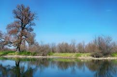 Flod blå himmel, vårväder, sommar, solig dag, härlig la Royaltyfria Bilder