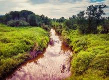 Flod bland gräs och träd som skuggar sommaren arkivbild