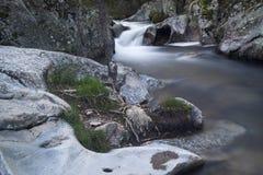 Flod Cambrones i La Granja de San Ildefonso segovia Royaltyfri Foto