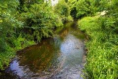 Flod Darent på Lullingstone Roman Villa, Darenth dal, Kent, England royaltyfri bild
