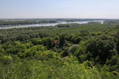 Flod Donau i Erdut, Kroatien Royaltyfria Foton