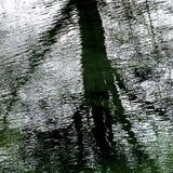 Flod Driffield östliga Yorkshire England Royaltyfria Bilder