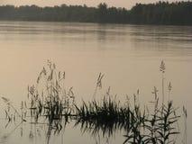 Flod efter solnedgång Arkivfoton